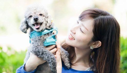 ペット好きや動物好きの人におすすめの婚活方法ペットコン