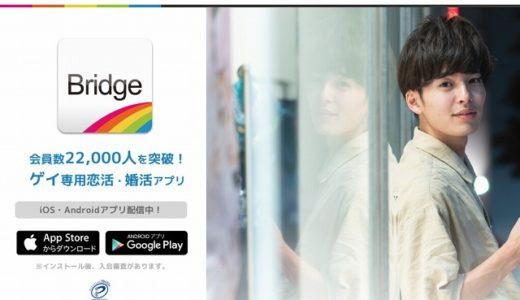 Bridge(ブリッジ)はゲイ専用アプリ!利用者の評判や口コミは?