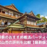 【2020年】愛媛県のおすすめ婚活パーティー8選!松山市の評判を比較