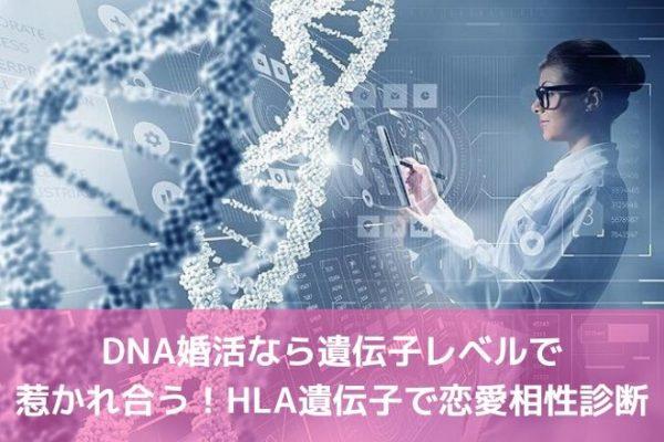 DNA婚活なら遺伝子レベルで惹かれ合う!HLA遺伝子で恋愛相性診断
